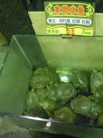 Guangzhou0001.jpg