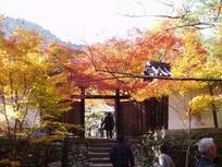 kyoto_himeji20070001.jpg
