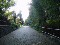 kyoto_himeji20070003.jpg